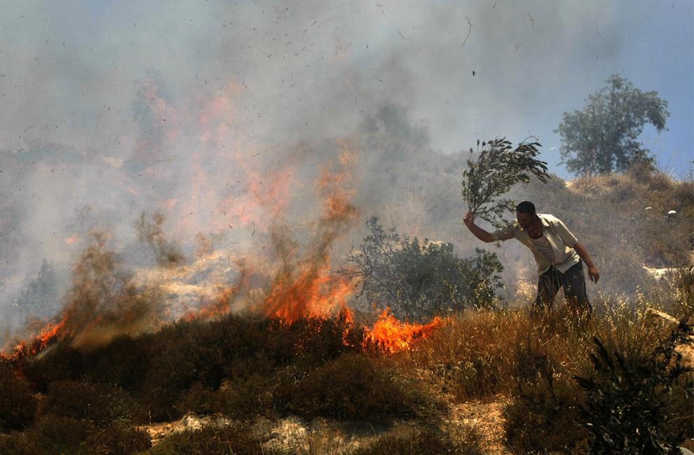 Palestina mencoba untuk memadamkan api pada bidang Palestina, yang membakar pemukim Yahudi di dekat desa Hawara dan penyelesaian Yitzhar di bagian utara Tepi Barat, 1 Juni 2009.  (Menahem Kahana / AFP / Getty Images)