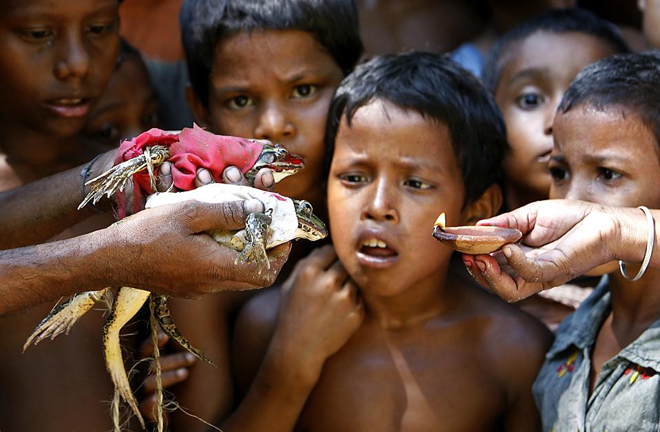 """) Дети со страхом наблюдают за """"церемонией бракосочетания лягушек"""" в индийской деревне Madhyaboragari. Жители деревни считают, что проведение подобных ритуалов с лягушками угодно богам и обеспечивает хороший урожай. (Rupak De Chowdhur/Reuters)"""