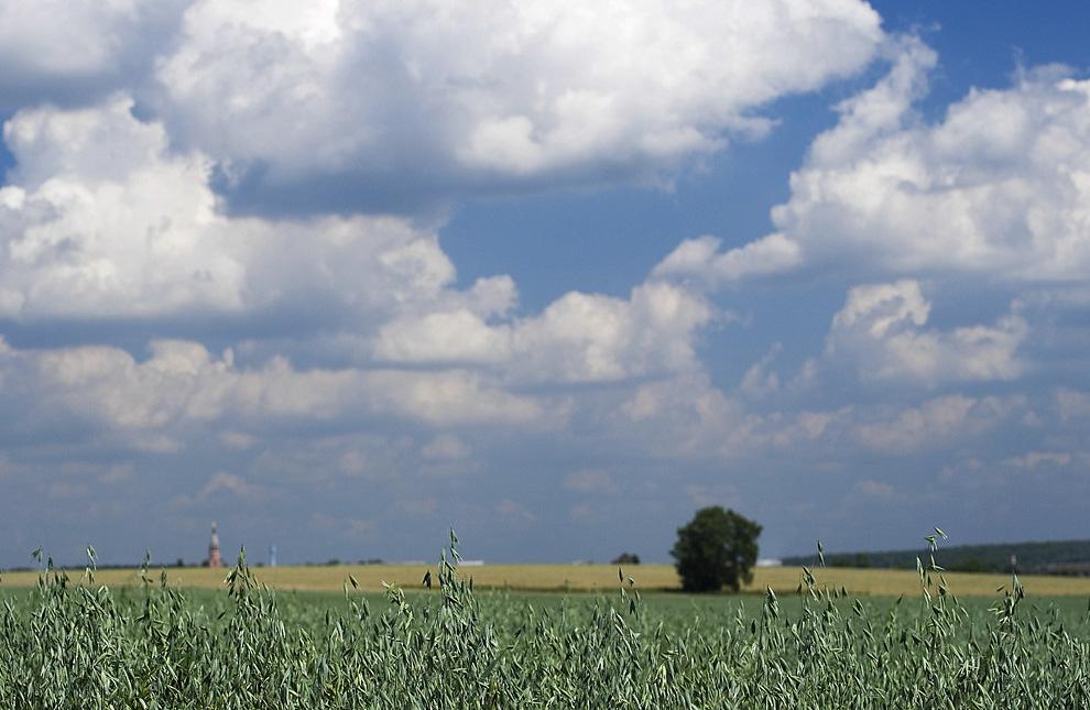 1-Живописнейшее место проведение фестиваля Городецкое Гульбище - расположенное в 50 км от г Подольск.
