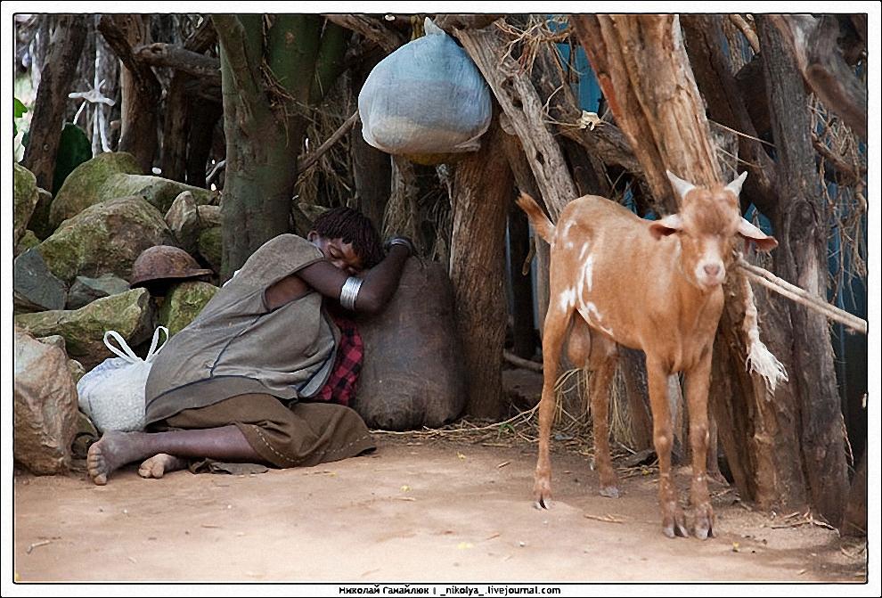 26) Местами для отдыха жителя не перебирают - где упал, там и уснул.