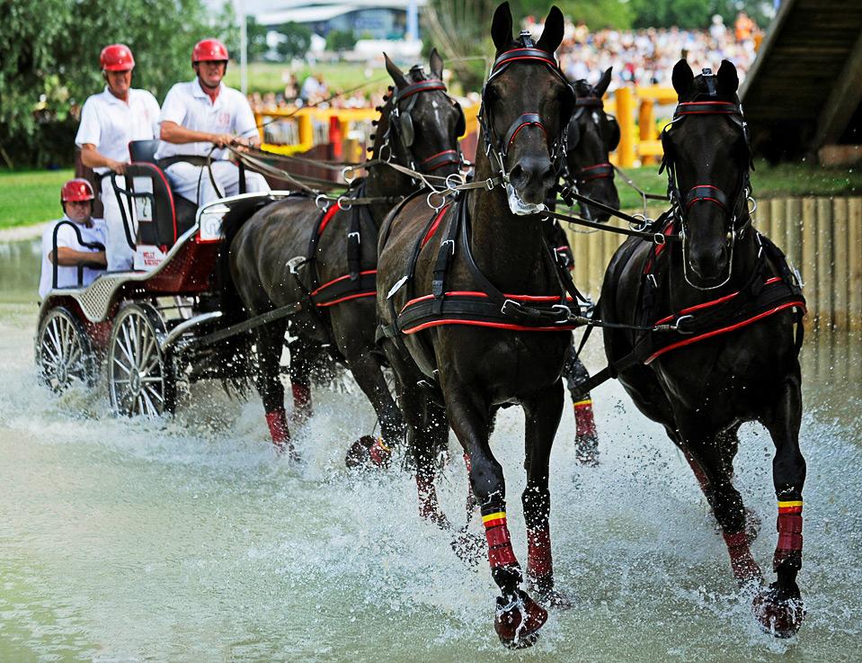 12) Всемирный конный фестиваль CHIO в немецком городе Аахен 4 июля. (CLEMENS BILAN/AFP/Getty Images)