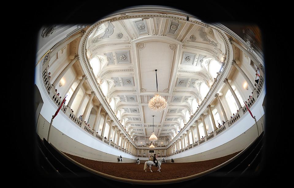 20) Наездники из традиционной испанской школы верховой езды Lipizzan тренируются в холле Императорского Дворца в Вене 25 июня. Эта школа верховой езды существует уже 430 лет. Этот зал был построен в период с 1729 по 1735 год для обучения аристократической молодежи верховой езде. (JOE KLAMAR/AFP/Getty Images)