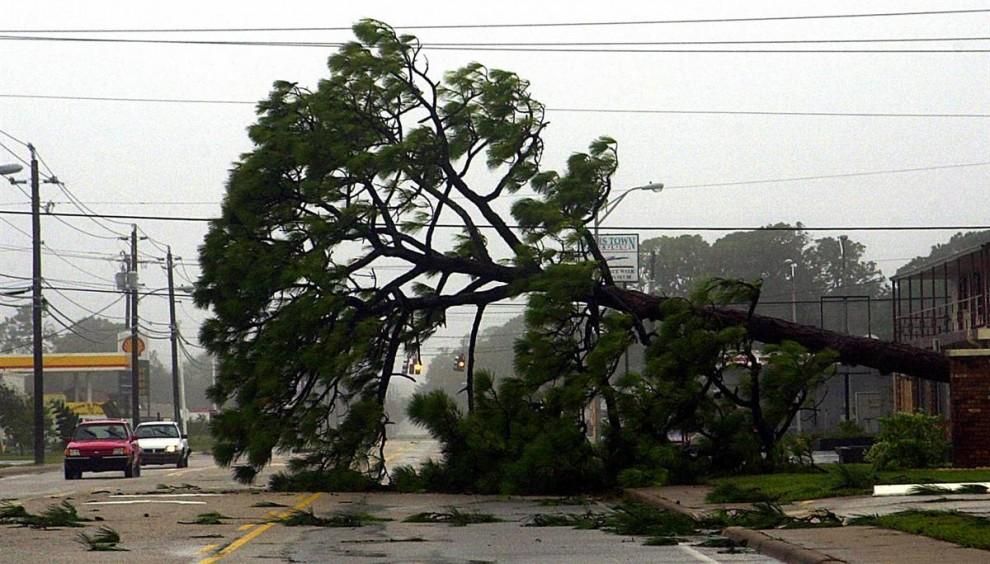 16) Улицы Тутсвилля и других юго-восточных городов штата Флорида были завалены после урагана Фрэнсис, достигшего побережья 2 сентября 2004 года. Сильный ветер и дождь продолжались несколько дней. Ураган Фрэнсис принес убытков почти на $10 миллиардов. (Bruce Weaver/AFP/Getty Images)
