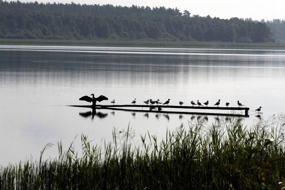 )  Озерный край Мазуры в Польше включает в себя 2000 озер и охватывает территорию в 32,000 кв.мили. (Artur Reszko / EPA)