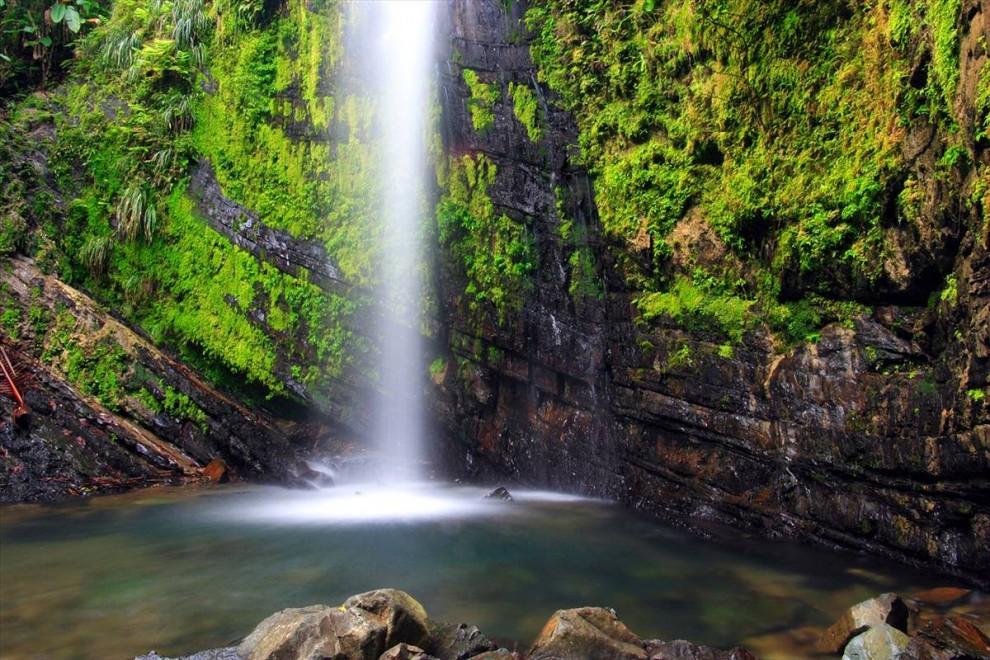 ) Карибский Национальный Лес, известный также под названием «El Yunque» в Пуэрто-Рико раскинулся на 28,000 акр. Это единственный тропический лес в американской национальной лесной системе. (Featurepics.com)