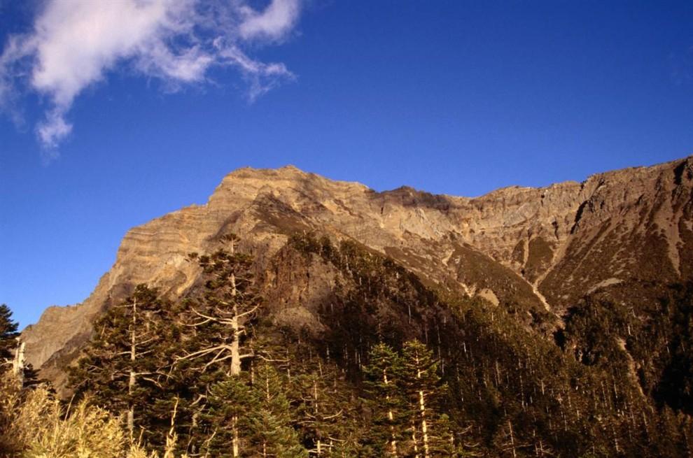) Самая высокая точка Тайваня расположена в Национальном Парке Юйшань. Гора Юйшань, или гора Джейд, возвышается на 13,000 футов на уровне моря. (Martin Moos / Lonely Planet)