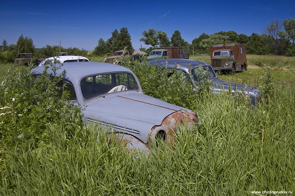 6) Заросший травой «Москвич-401», на заднем плане семейство Газиков.