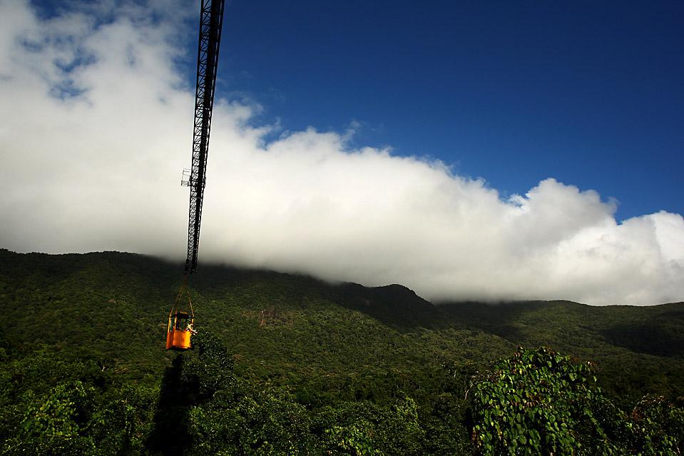 11) Ученые из университета Джеймса Кука изучают воздействие изменения климата на тропический лес Дейнтрии (Daintree) на Австралийской научно-исследовательской станции в Кабо Скорби, Австралия. Данный объект, который будет завершен в 2010 году, использует для доступа краны с балдахином. (Phil Walter/Getty Images)