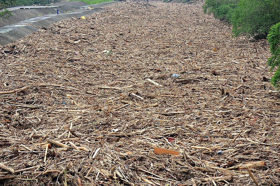 16) Человек идет по берегу реки заполненной обломками деревьев и мусором, который смыло в реку по смертоносным тайфуном Моракот. Снимок сделан в среду в Чишэнь, уезд Гаосюн в Тайване. (Sam Yeh/Agence France-Presse/Getty Images)