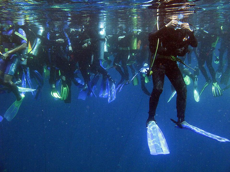 10) Дайверы в водах Манадо, Индонезия, устанавливают рекорд по одновременному погружению. (Sonny Tumbelaka/Agence France-Presse/Getty Images)
