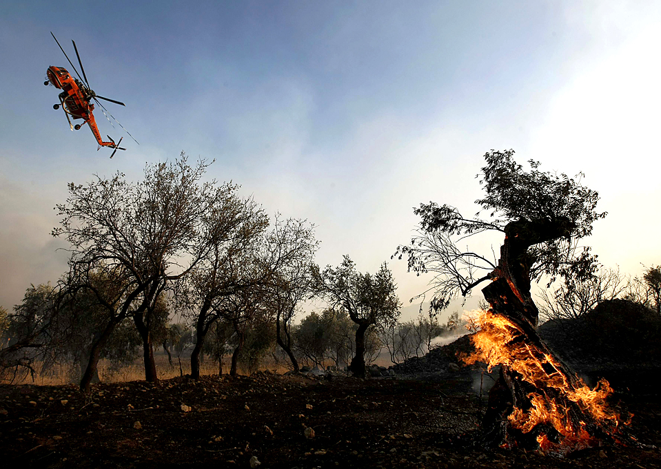 11) Вертолет пролетает над лесным пожаром в деревне Домврена, Греция. Пожар, который бушевал в центральной Греции, больше не угрожает сельчанам,  после того, как ветер изменил направление. (Yiorgos Karahalis/Reuters)