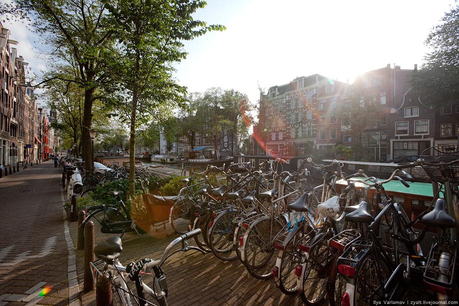 виду сколько стоит аренда байка в амстердаме без проблем найдете