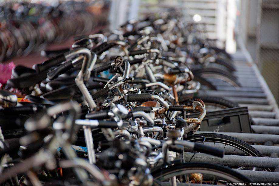 21) Отчасти это связано с недостатком и дороговизной парковок в Амстердаме и других крупных городах.