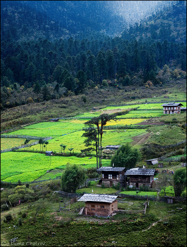 2) Центральный Бутан. Утро.