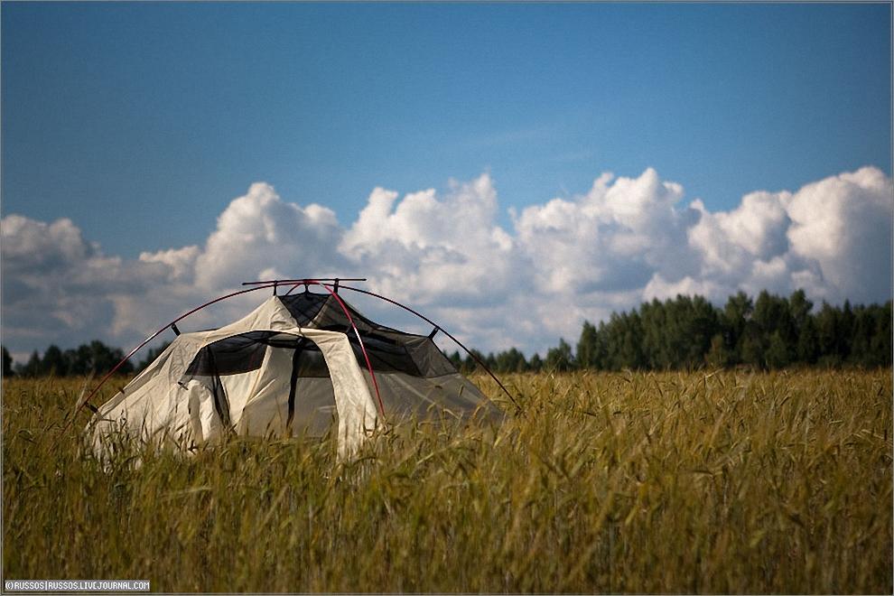 2) Бивак около вышки. Встали на краю поля. На фотографии моя палатка, которая сушится после конденсата.