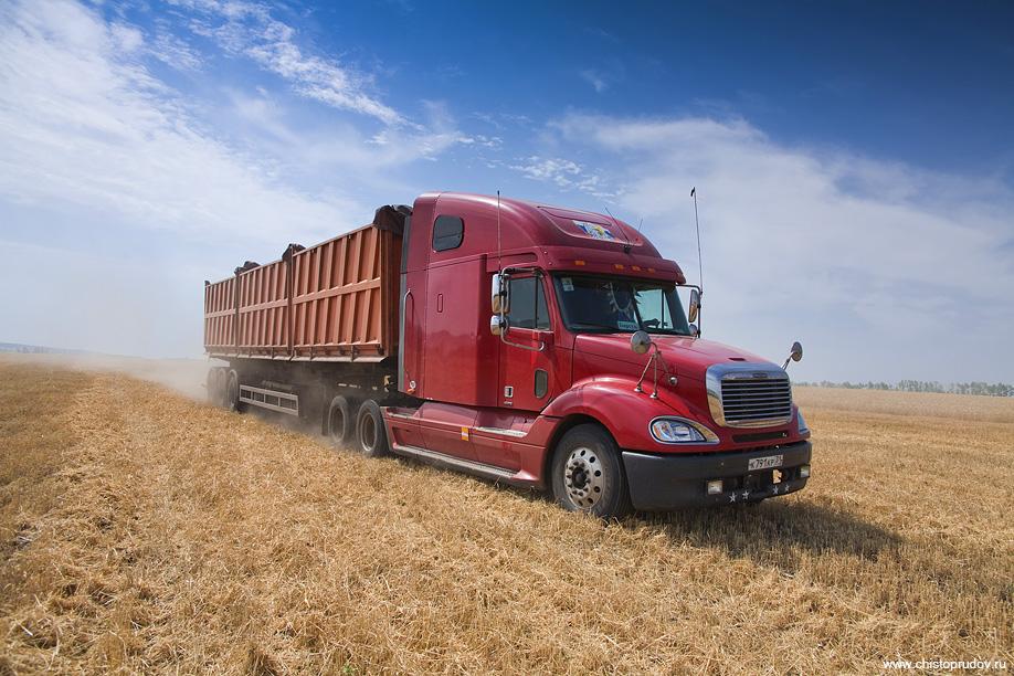 14) По сигналу тут же направляется один из Фрейтлайнеров с белорусским полуприцепом САД 119 на 40 тонн зерна.