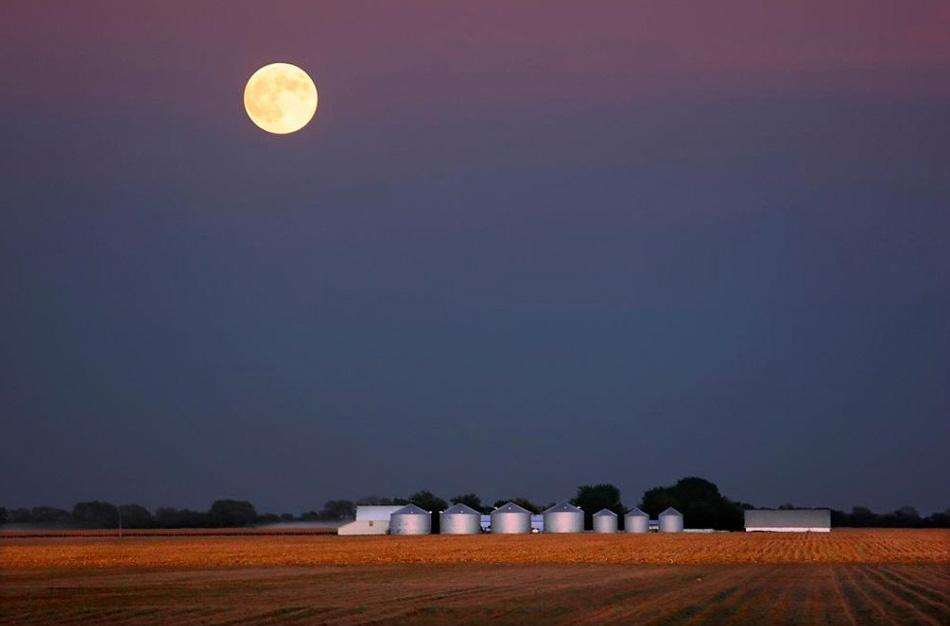 2) После заката солнца луна встает над недавно убранным кукурузным полем в Плезент Плейнз, штат Иллинойс, на этом снимке, сделанном 6 октября 2006 года. Название полной луны в сентябре относится к североамериканским индейцам, потому что именно в период ее восхождения нужно было собирать кукурузу. Очень часто сентябрьская полная луна также называется луна Урожая. (Seth Perlman, AP)