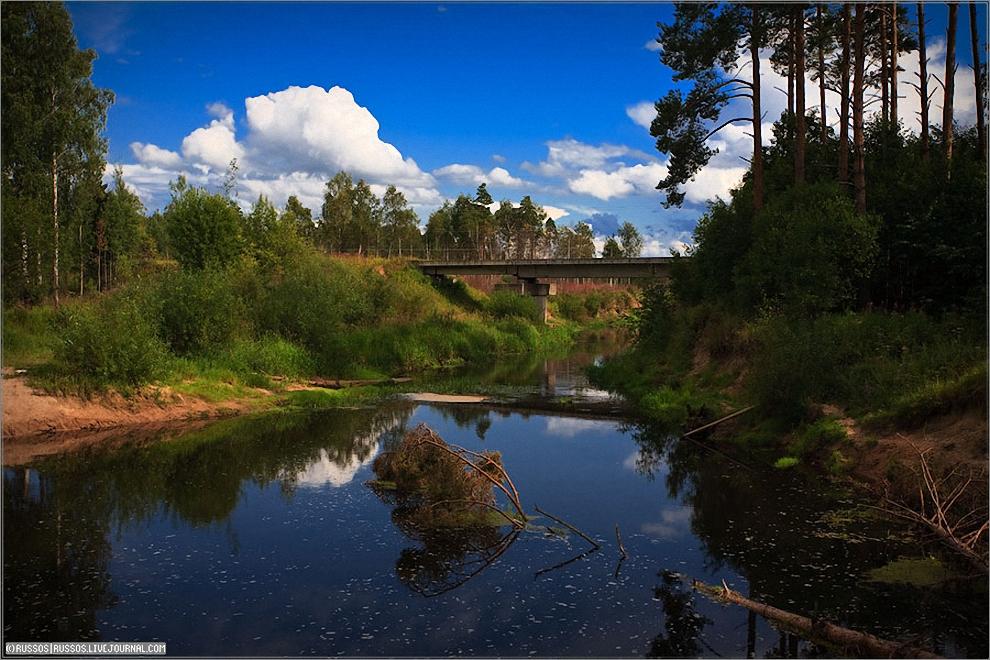 23) Бивак где-то в Тверской области на обед. Мост на заднем плане явно принадлежит жд, но её там нету. На насыпи просека. На самом мосту вообще ничего нету, такое ощущение, что жд ветку не достроили.