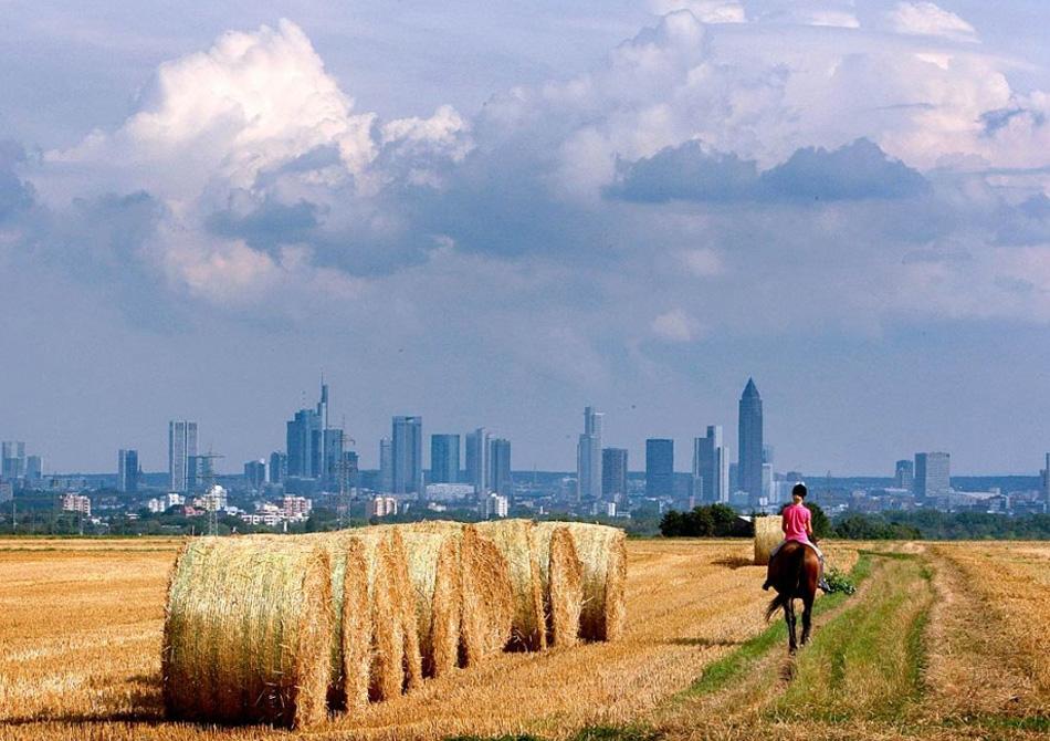 26. Женщина едет на лошади мимо стогов сена на поле недалеко от Франкфурта, Германия, 10 августа. (Michael Probst, AP