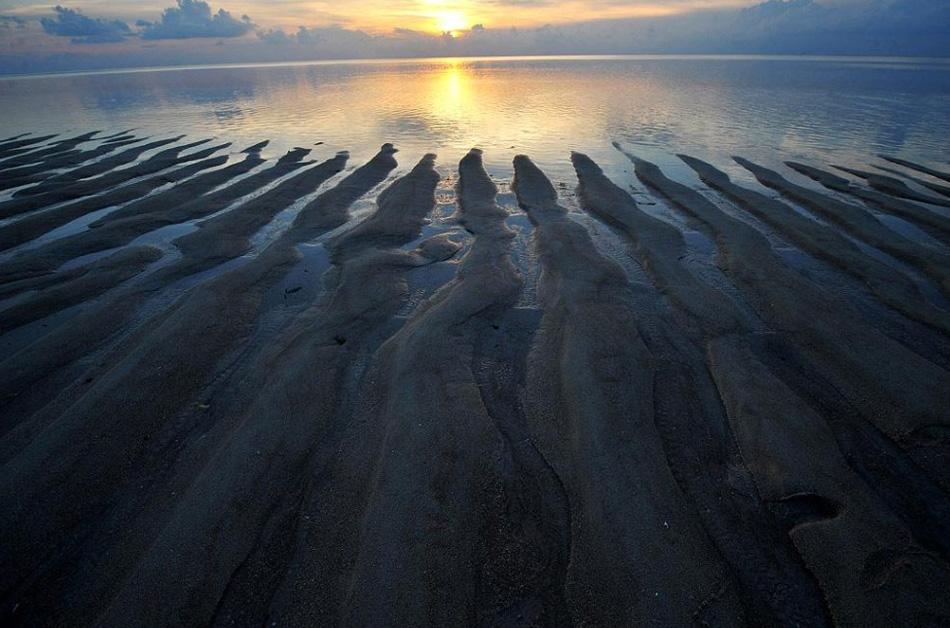 2. Песок на пляже на острове Анано – небольшом островке, отделившемся от основного архипелага, составляющего округ Вакатоби. Вакатоби – аббревиатура от названий четырех главных островов Ванги-Ванги, Каледупа, Томия и Бинонгко, которые вместе с другими небольшими островками образуют архипелаг Туканг Беси на юго-восточном окончании Сулавеси. Известный среди дайверов своими прекрасными коралловыми садами, Вакатоби имеет площадь в 3,4 миллиона акров суши и воды, и был объявлен национальным парком в 1996 году. Вакатоби считается одним из главных мест сохранения морской жизни в Индонезии благодаря его разнообразию, масштабам и состоянию рифов. (Adek Berry, AFP / Getty Images)