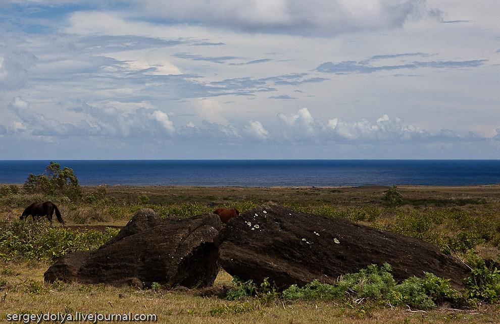 """28) Отсюда их транспортировали к месту назначения. Есть много теорий о том, как их доставляли к месту """"проживания"""". Легенда гласит, что Моаи сами шли по острову. Поэтому некоторые предполагают, что их транспортировали стоя, перекантовывая."""