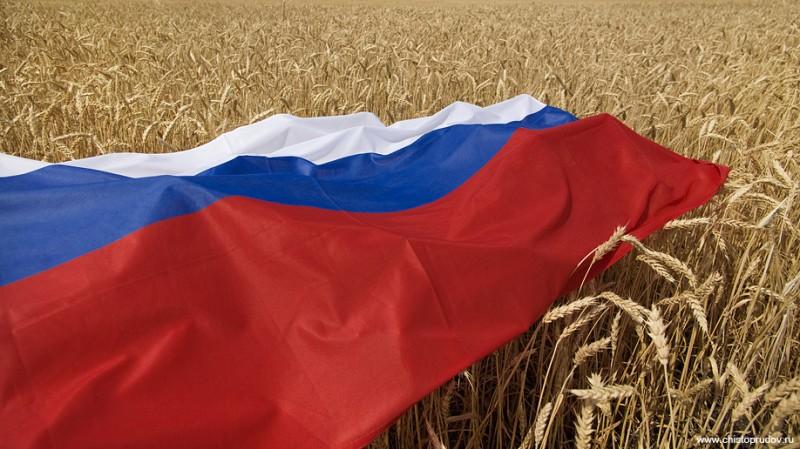 Белгородская область. Уборка урожая