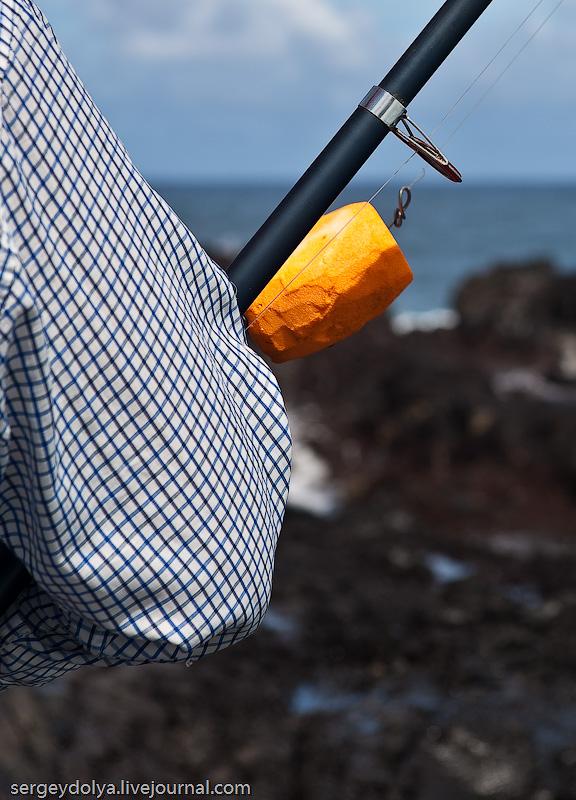 33) Рыбаки никакого внимания на них не обращают. Они используют массивные поплавки, выструганные из пенопласта.