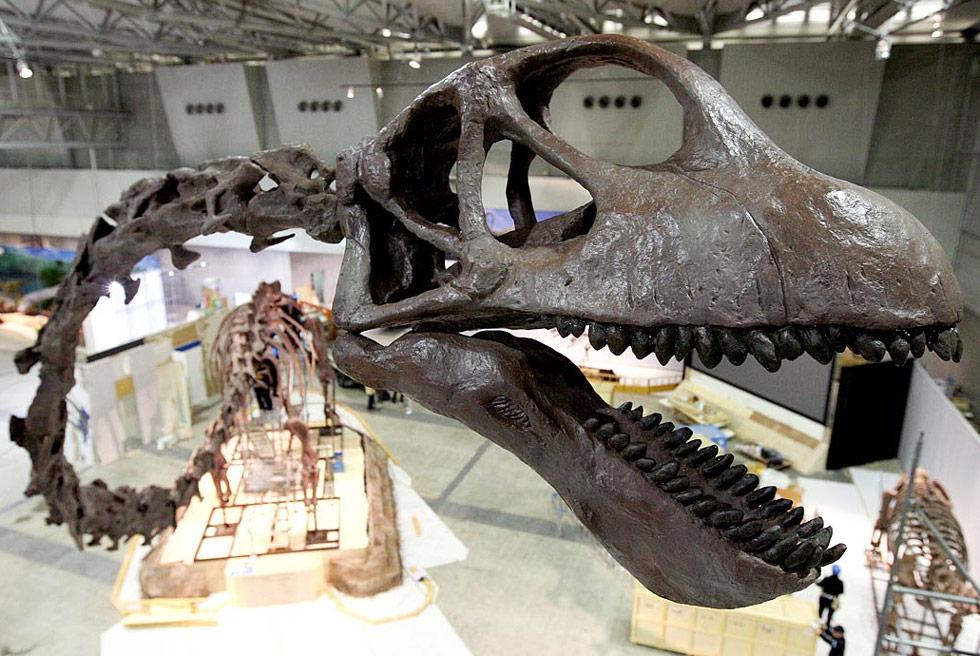 36. Модель Маменчизавра – одного из крупнейших динозавров - в полный рост на выставке «Динозавр 2009» в Чибе, Япония, 13 июля. (Junko Kimura/Getty Images)