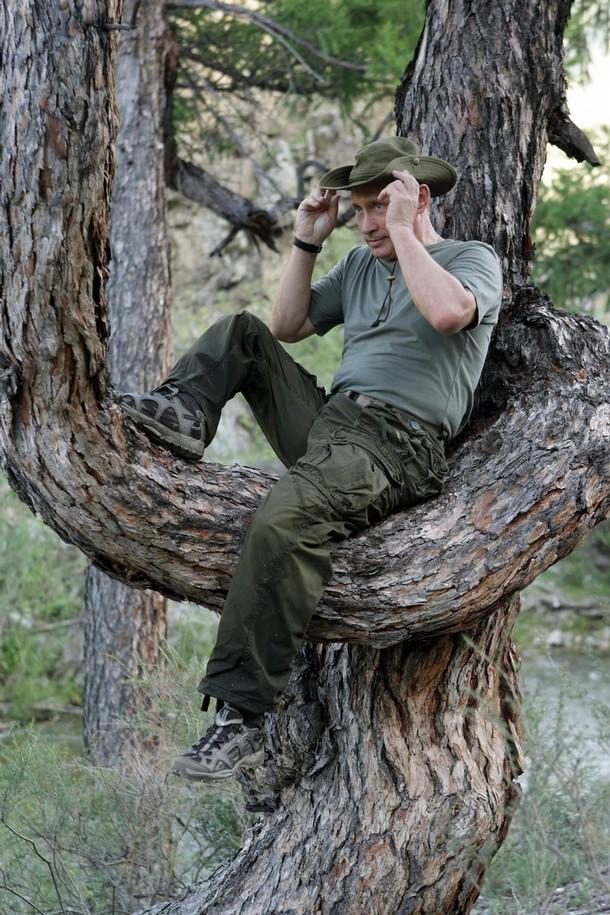 Премьер-министр России Владимир Путин сидит на дереве во время рыбалки.