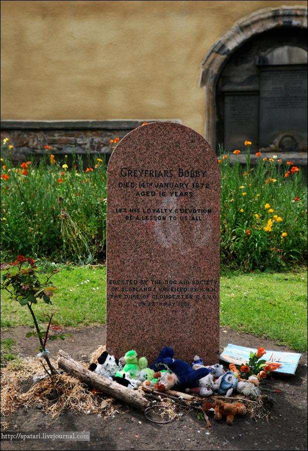 20) Вообще, довольно широко в Эдинбурге раскрыта тема смерти. Вот вам ещё одна история, думаю, многие её знают. Священник одной из церквей завёл себе скотчтерьера, назвал его Бобби. Когда псу было 2 года, священник умер. С момента смерти хозяина Бобби не отходил от его могилы на протяжении 14-ти лет. Служители церкви заботились о нём, подкармливали, а он продолжал годами сидеть на одном месте. Когда Бобби умер, его хотели похоронить рядом с могилой хозяина, что было бы логично, но церковь, при которой находилось кладбище, запретила это делать, так как считалось, что животным не место там, где покоятся люди. В итоге его похоронили у входа в кладбище.