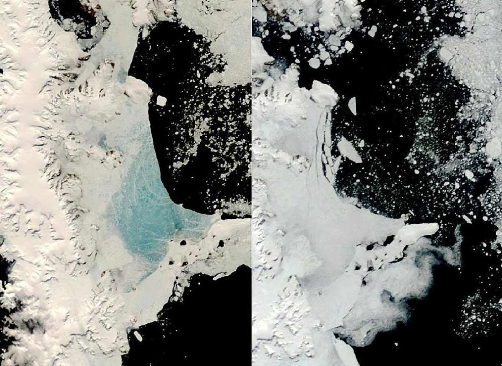 4. Средняя годовая температура Антарктики поднялась на 1 градус за последние 50 лет – но ее ледники тают намного быстрее, чем ожидалось. Исследование, проведенное в феврале, показало, что районы таяния ледников оказались куда обширнее, чем полагали ученые. Наверху: снимок со спутника показывает льды на Антарктическом полуострове 13 декабря 2008 года слева и 2 января 2009 года справа. (NASA).