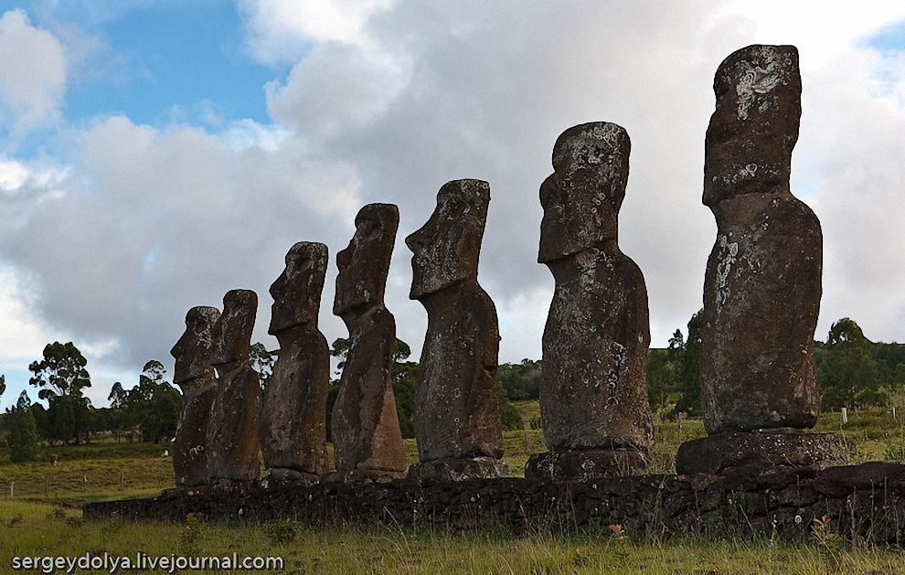44) Считается, что каждый Моаи создан в честь конкретного вождя или человека. Эти 7 скульптур установлены в честь первых 7 поселенцев, приплывших сюда на больших пирогах.