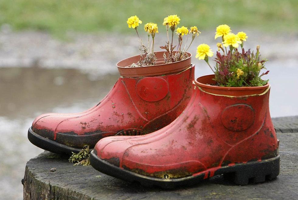 10) Цветы растут в старых красных резиновых сапогах в саду северной Германии 8 июля. (Joerg Sarbach/AP)