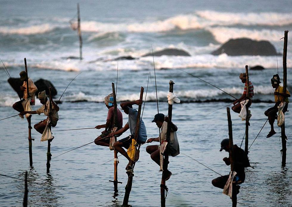 21) Рыбаки сидят на ходулях, погруженных в воды морского залива Коггала, Шри-Ланка, 5 июля. Рыбацкие ходули являются традиционным средством заработка в этом районе, и каждое такое устройство – настоящее богатство, передающееся от поколения к поколению. (Vivek Prakash/Reuters)