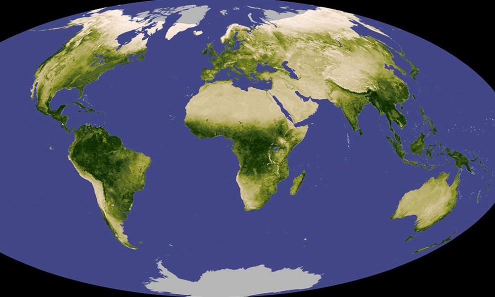 7. На Земле около 2 миллионов видов жизни – и еще от 5 до 100 миллионов, о которых пока неизвестно, так заявляет Национальный Научный Фонд. Наверху: в НАСА использовали снимки со спутника, чтобы продемонстрировать уровни растительности на Земле. Серые регионы обозначают местности, о которых не удалось получить никаких данных. (NASA).