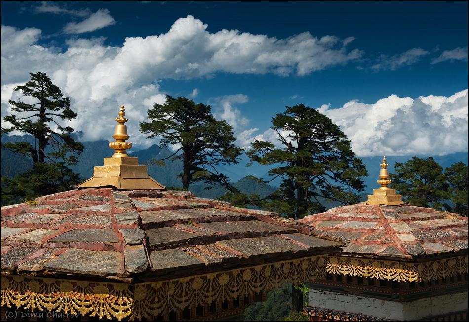 """Зато есть National Geographic и целый спектр образовательных программ BBC. Вообще, местное телевидение отфильтровано с большим умом. В Бутане запрещено табакокурение. То есть да, вы можете ввезти с собой несколько пачек """"для личного использования"""", но довольствоваться придется лишь этим. В стране запрещена охота и вырубка лесов (браконьеру грозит пожизненное заключение), и горы буквально утопают в девственных лесах. Может потому воздух здесь невероятно густой и вкусный."""
