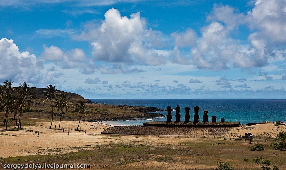 9) Местные этих истуканов называют Моаи. На острове их чуть меньше 1000 штук и все они, кроме 7 фигур, установлены на побережье и смотрят внутрь острова