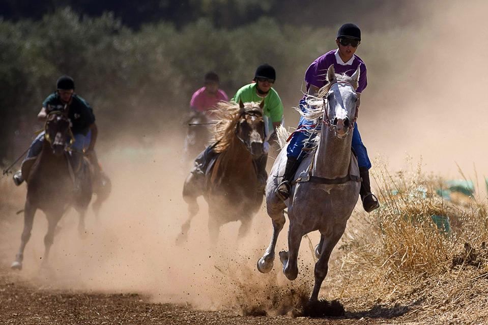 13) Скачки на лошадях в Палестине, 7 августа. (REUTERS/Fadi Arouri)