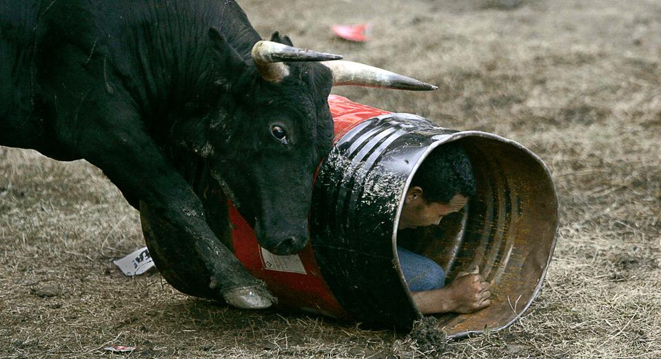 12) Разъяренный бык толкает бочку, внутри которой спрятался человек, во время традиционного фестиваля  «Corralejas» в Сабанете, Колумбия, 9 августа. (REUTERS/Albeiro Lopera)