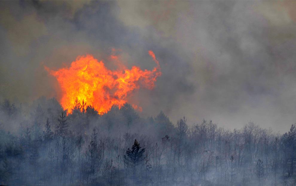 5. Пожар неподалеку от северной испанской баскской деревни Мендибил, недалеко от Виктории 22 июля 2009 года. В тот день во многих частях Испании температура достигла 41 градуса по Цельсию (105 по Фаренгейту). (RAFA RIVAS/AFP/Getty Images)