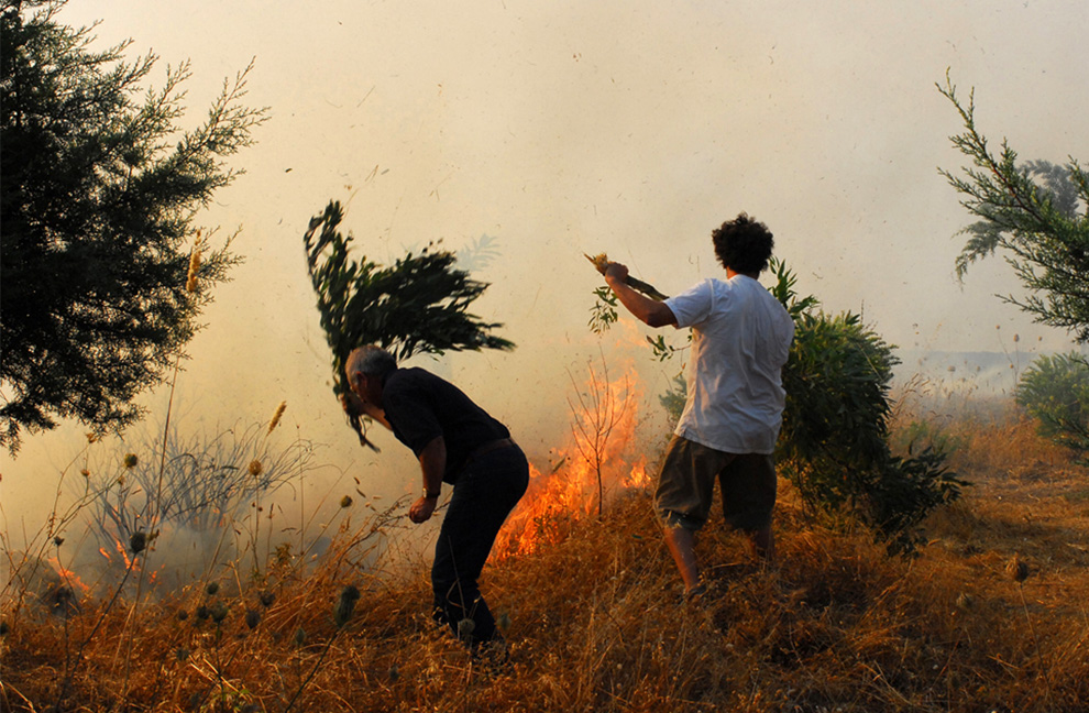 23. Добровольцы пытаются с помощью веток погасить пожар недалеко от города Нуоро в центре Сардинии 23 июля 2009 года. (MASSIMO LOCCI/AFP/Getty Images)