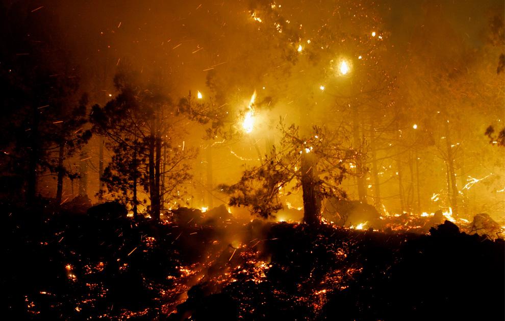 27. Лесной пожар бушует недалеко от города Тигалате на острове Ла Пальма утром 2 августа 2009 года. (DESIREE MARTIN/AFP/Getty Images)