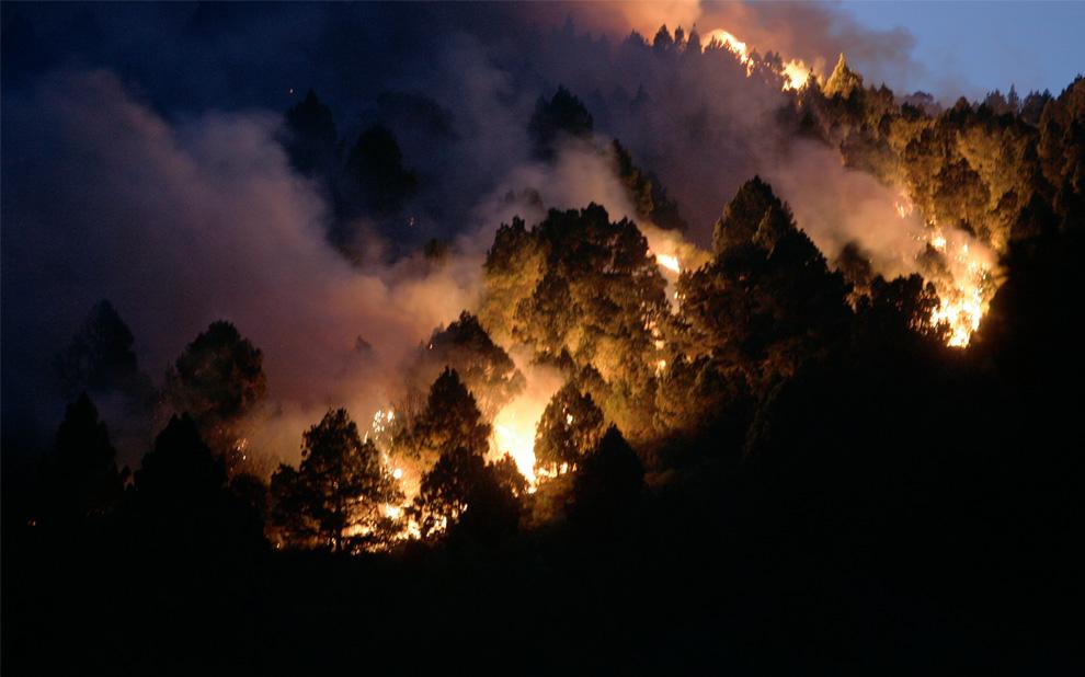 30. Пожар пожирает лес недалеко от города Тигалате на острове Ла Пальма, Испания, 2 августа 2009 года. (DESIREE MARTIN/AFP/Getty Images)