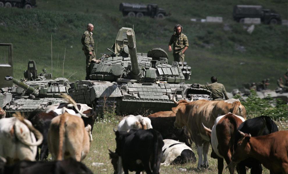 5) Группа росийских военных на пути в зону конфликта стоит рядом со стадом коров в югоосетинсом селе Джаба 9го августа 2008 года. Фото: Дмитрий Костюков, AFP