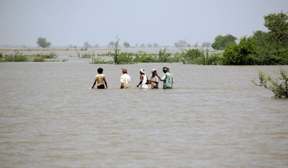 12) Сезон муссонов вызвал серию серьезных наводнений в низколежащих районах Индии. На этой фотографии жители деревни переходят вброд залитую водой дорогу неподалеку от деревни Митхапур, в 67 километрах (42 мили) к западу от города Ахмедабад, 19 сентября 2008.