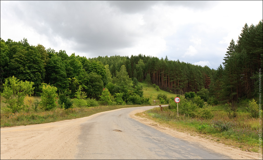 8) И тут неожиданно — сосновый лес на горе.