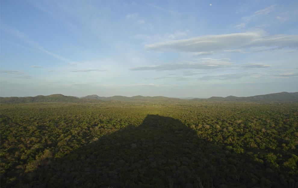 9. Тень каменной крепости на зеленой «шапке» из деревьев в Сигирии, Шри-Ланка, воскресенье 2 августа 2009 года. (AP Photo/Gurinder Osan)