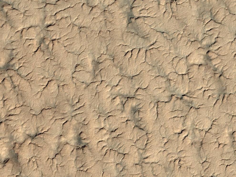 13. Этот снимок южного полярного региона Марса является частью серии фотографий, сделанных межпланетной станцией NASA Mars Reconnaissance Orbiter, в попытке отыскать модуль или хотя бы его парашют. Модуль был потерян после того, как вошел в атмосферу Марса в декабре 1999 года. Останки модуля могут быть покрыты пылью и льдом, что затрудняет поиски. Этот снимок был сделан 3 июля, а выпущен 8-го. (NASA/JPL/University of Arizona)