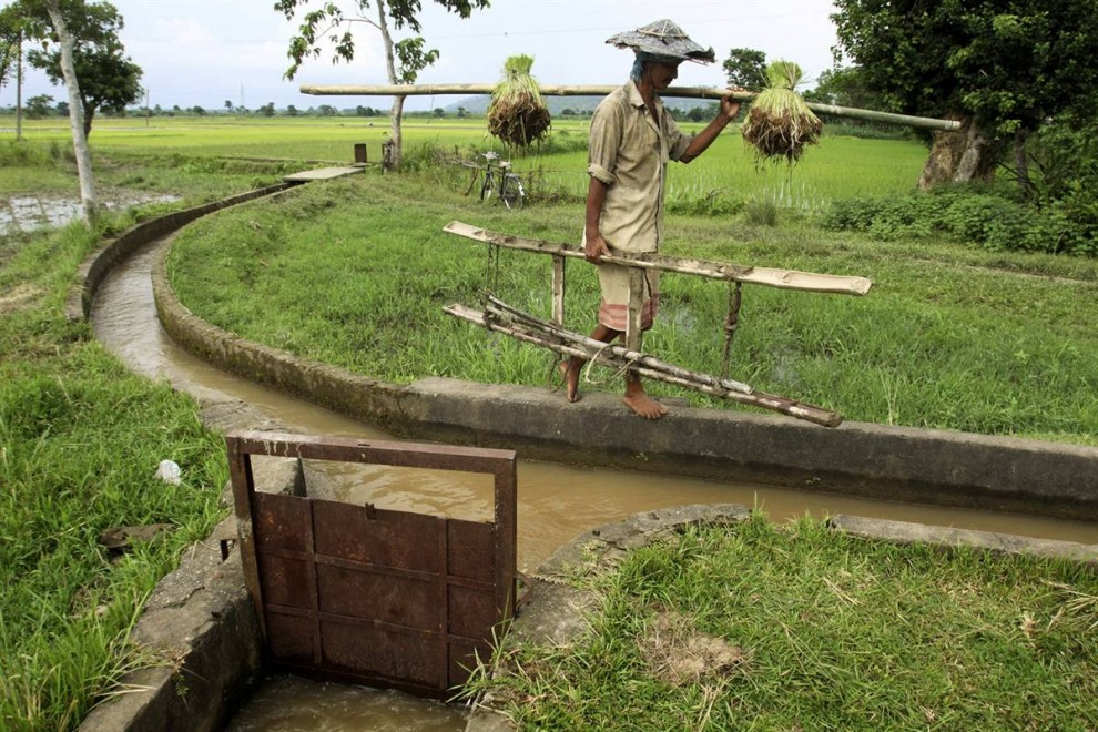 7) Крестьянин идет по кромке оросительного канала в северной Индии. Исследования подземных вод, основанные на спутниковых данных NASA, установили, что в период с августа 2002 по октябрь 2008 года уровень грунтовых вод на севере Индии снижался примерно на 30 сантиметров ежегодно, и основная причина этого - использование воды для орошения полей. (Altaf Qadri/AP)