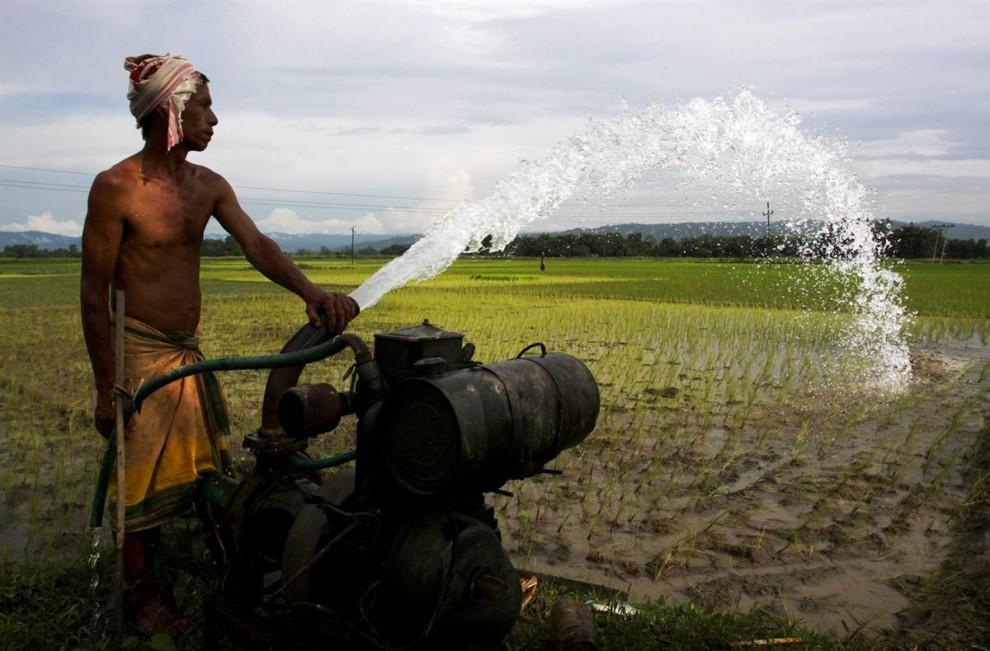 8) Крестьянин из северной Индии поливает свое поле. Авторы исследования о подземных водах отметили, что истощение водных особенно сильное, поскольку происходит в то время, когда количество осадков было немного выше нормы для этого периода. (Altaf Qadri/AP)